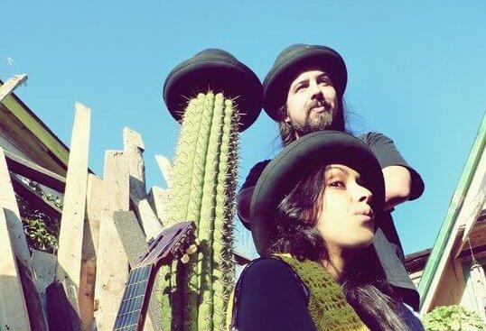 Cactus Andante - Promo