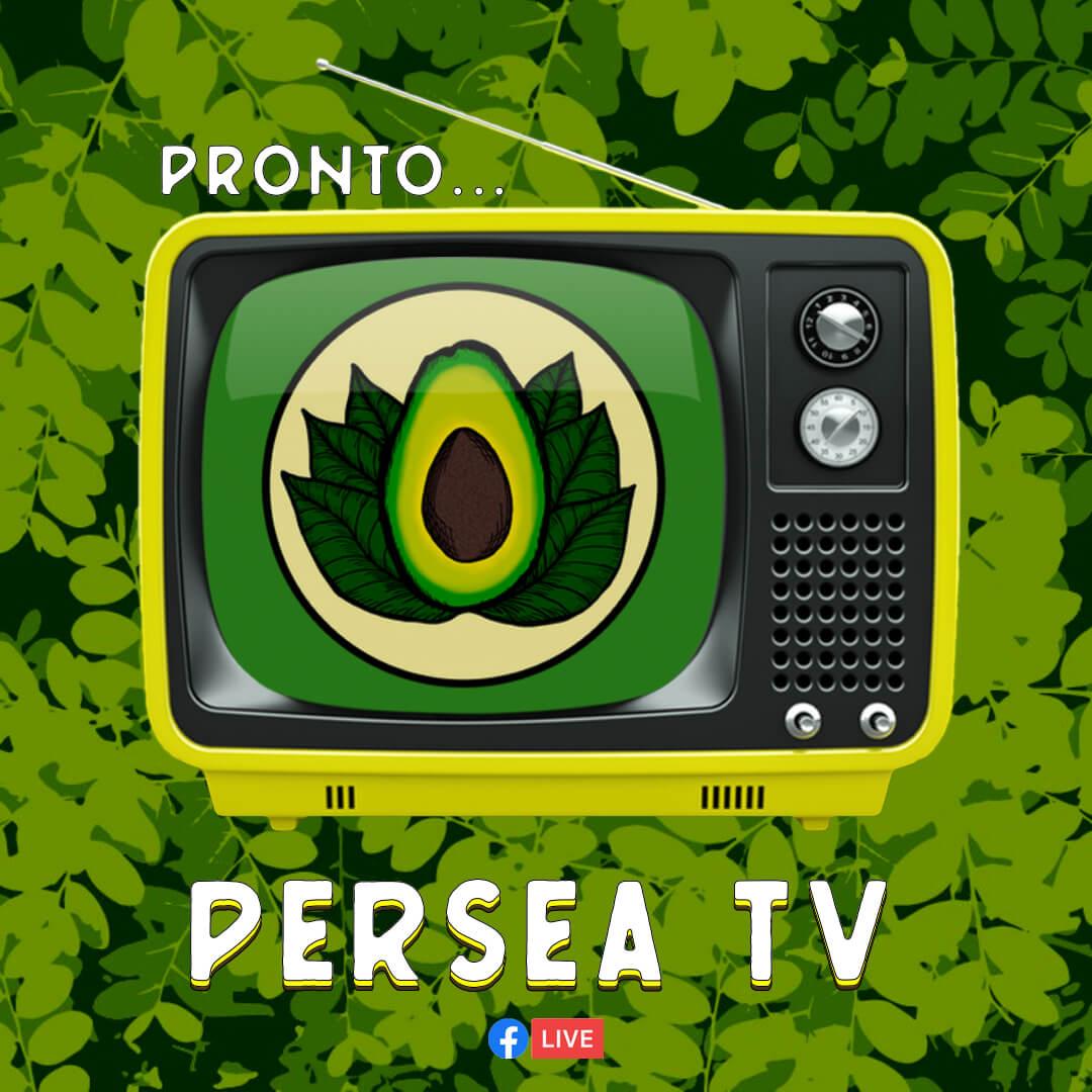 PERSEA TV - pronto [cuadrada]